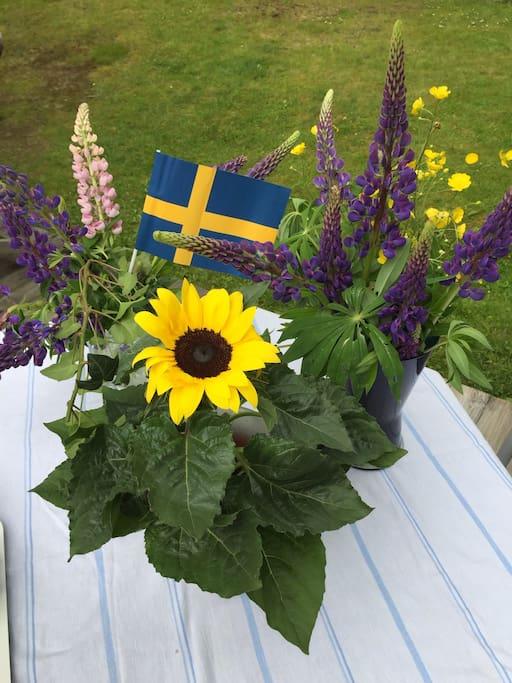 relax jönköping stockholm till bangkok