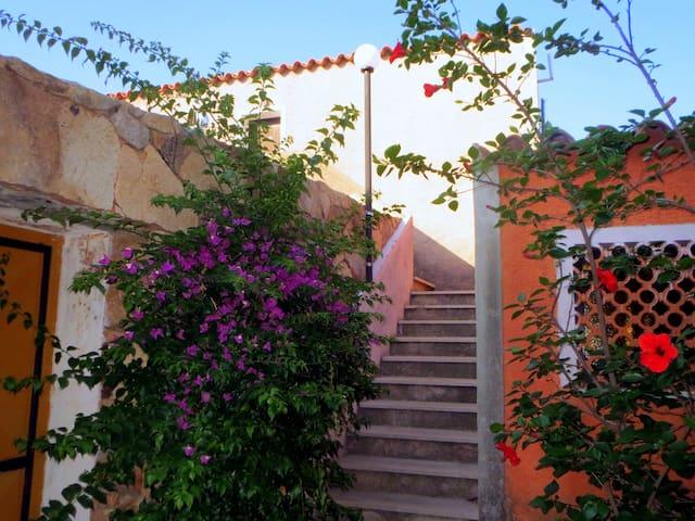 Casa Bibi - Porto Pollo - Byt