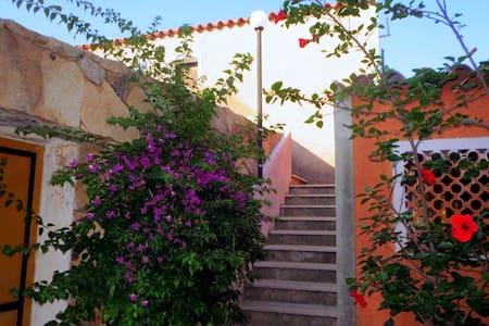 Casa Bibi - Porto Pollo - Lejlighed