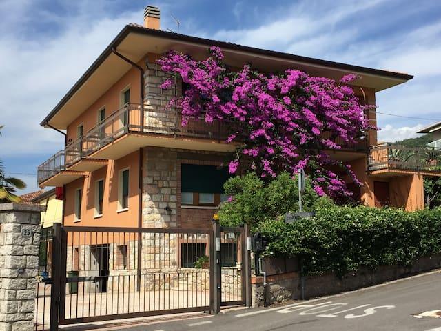 Residenza Bouganville - Torri del Benaco - Appartement