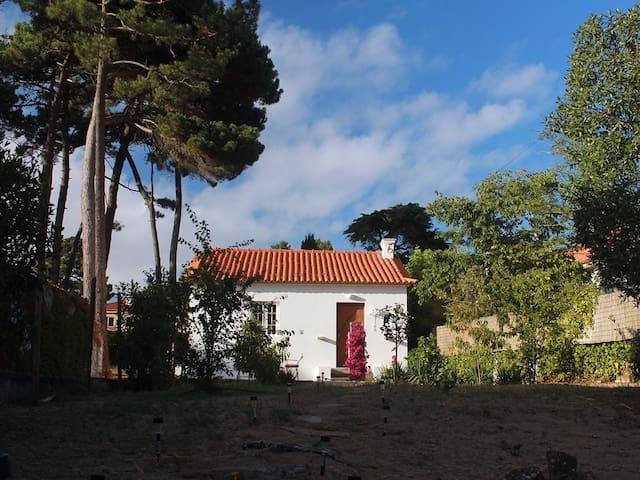 Buganvília House