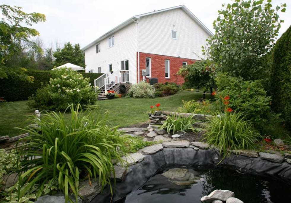 House (backyard with pond)