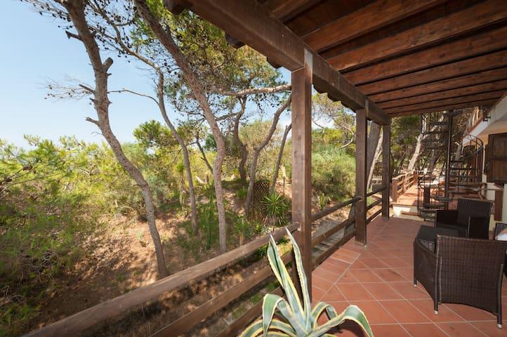 yucca location, in the seaside villa.