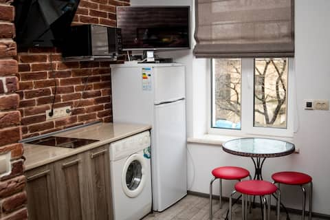 Уютная квартира в центре Львова