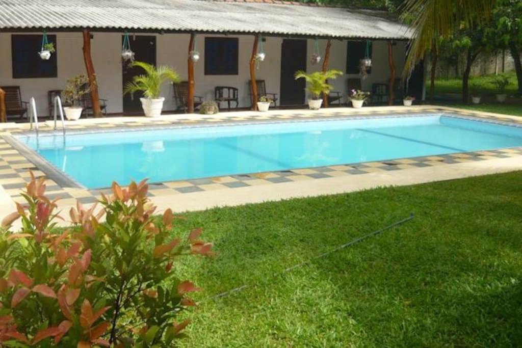 Sunrise Holiday Resort With Pool Bed And Breakfasts For Rent In Habarana Central Province