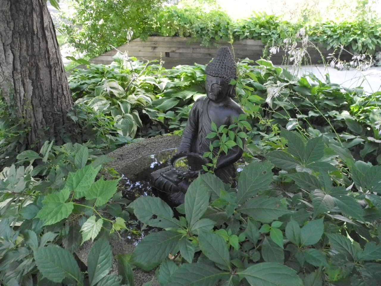 Buddha watches the front door.