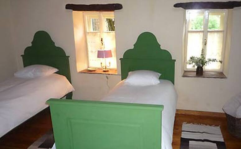 Twin bed room with private bathroom with shower