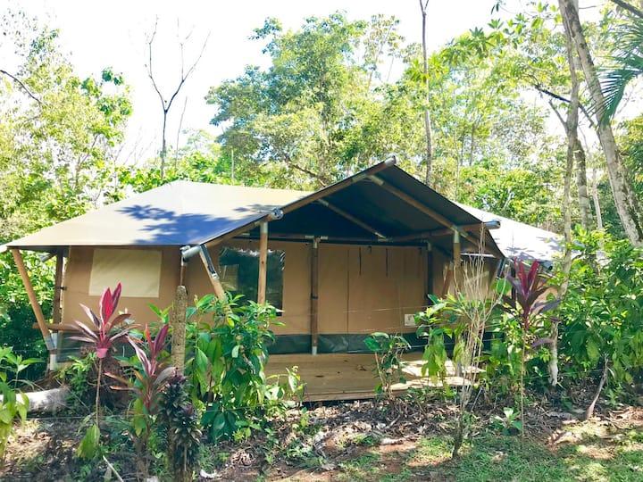 El pulpo Safari Lodge / Mokarran Lodge