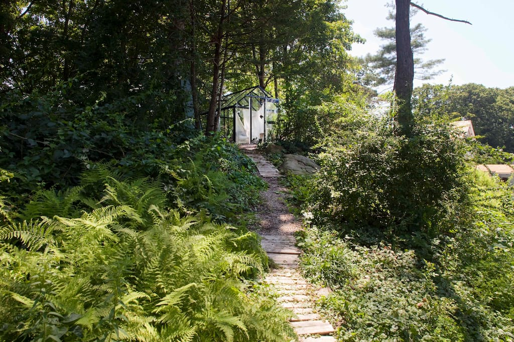 Path to glass house