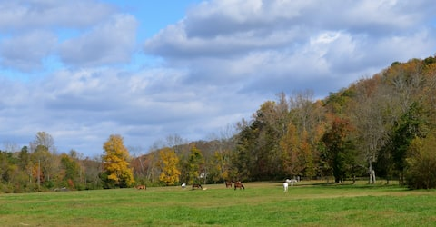 The Casita at Hidden Hills Farm & Saddle Club
