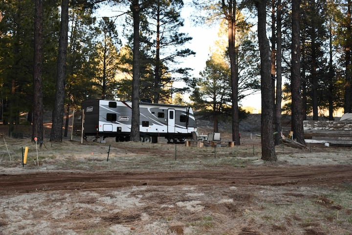 Experience Glamping in the Pines!!!