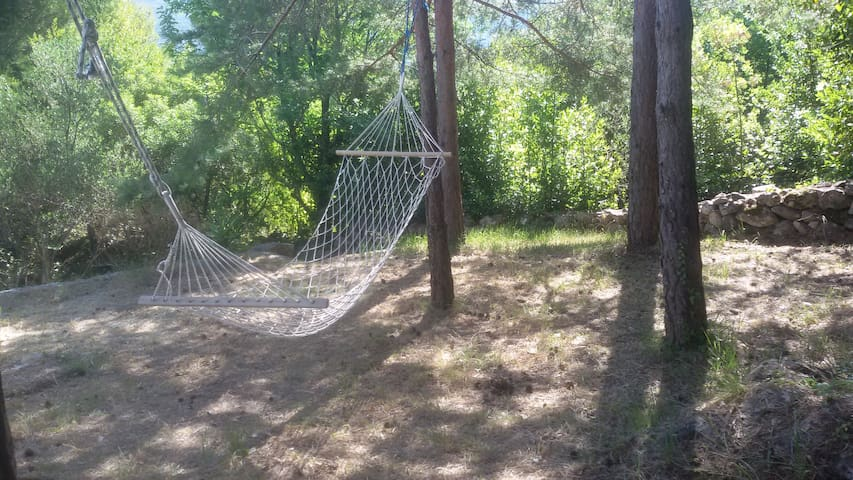 Hammock in shade of Pine trees on side of house. Priceless.