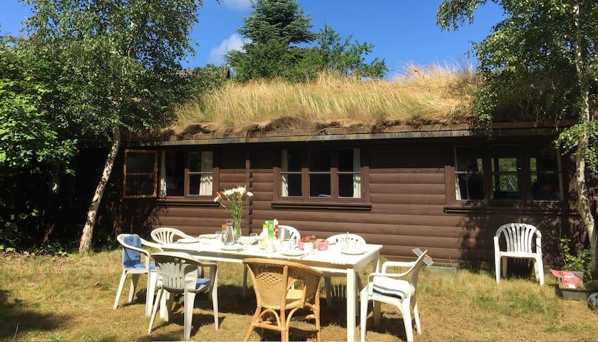 Seaborder, charmerende træhus  - Vejby - Hus