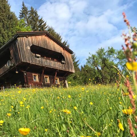 Zauberhütte Wildschönau OG.