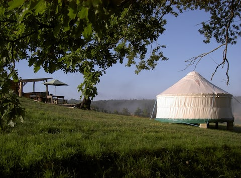 Quirky Camping Luxury Eco Yurts