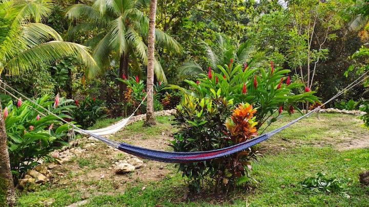 Wübu Eco-Hotel, Full house rental