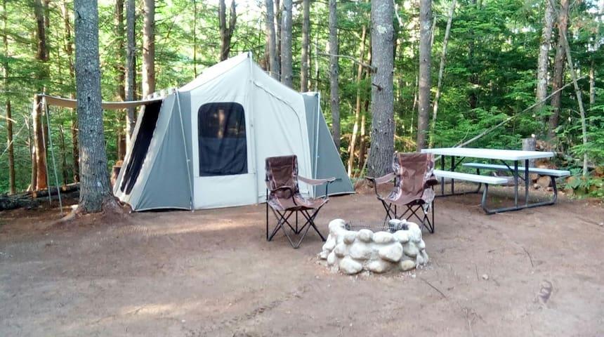 Take Me Tenting (Groupie Site)