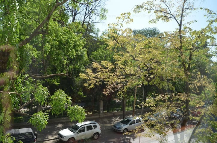 3 Rooms Central Apt / family * eco friendly