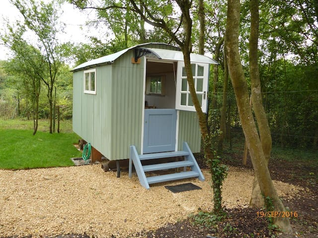 The Shepherd's Hut, Hiltonia, Hardwicke