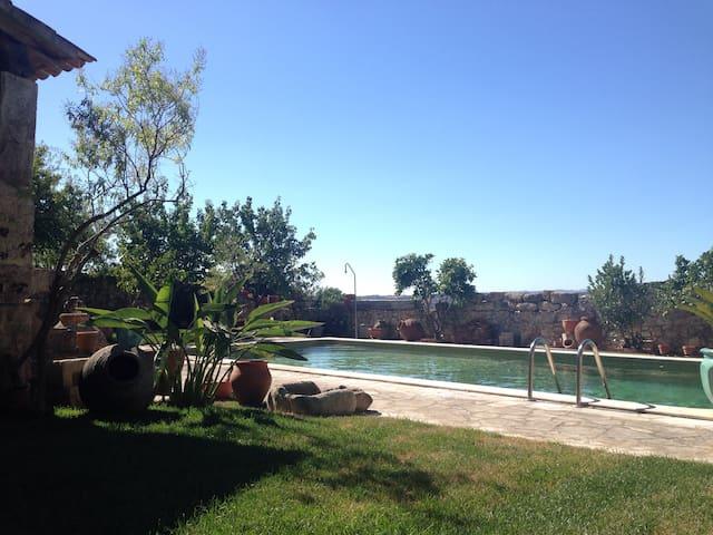 backyard and the pool