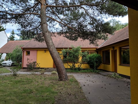 Beautiful house with garden in South Moravia