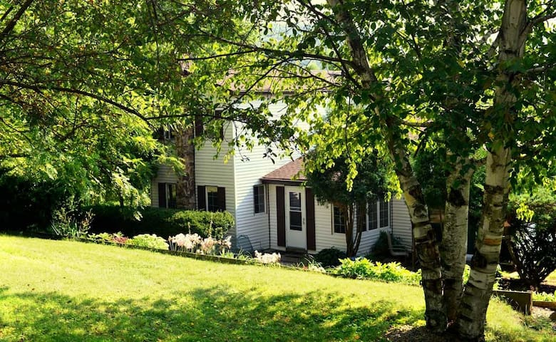 Beautiful country home in Galena - Galena - Huis