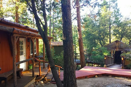 Cozy Lodge & TIKI Treehouse ! - Idyllwild-Pine Cove
