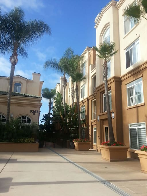 Room Apartments To Rent La Jolla