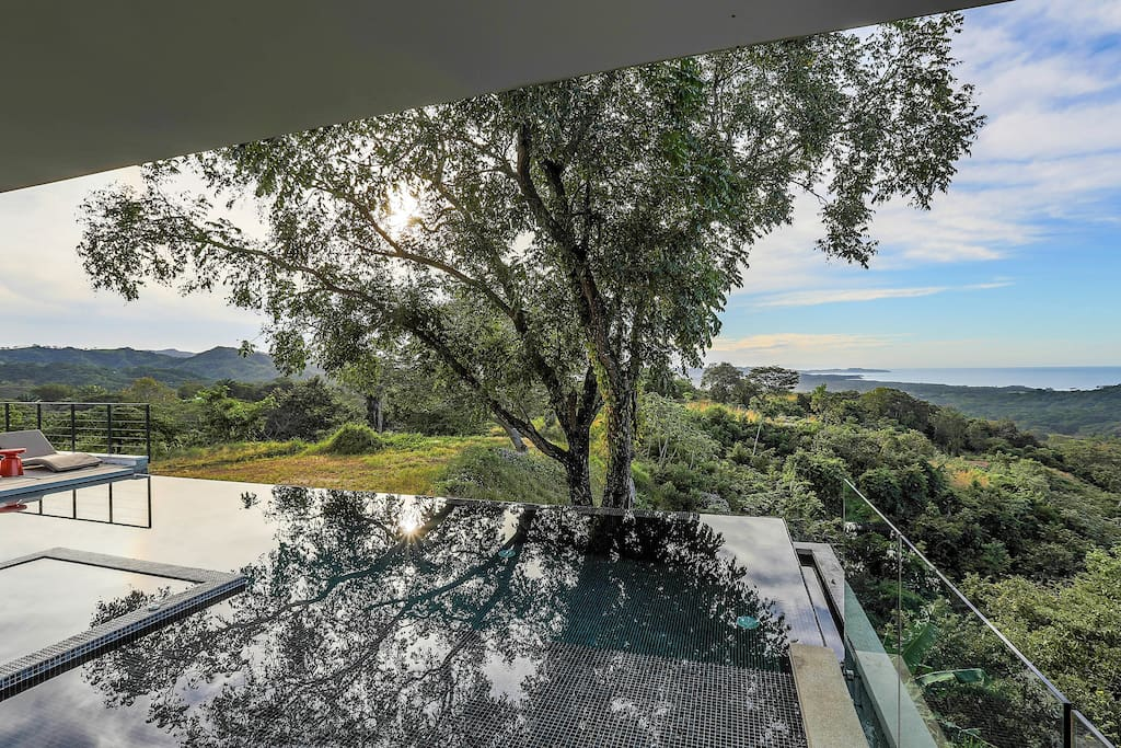 Exterior View - Infinity pool with the hillside and Pacific ocean view.