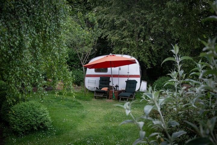 Tiny Camping