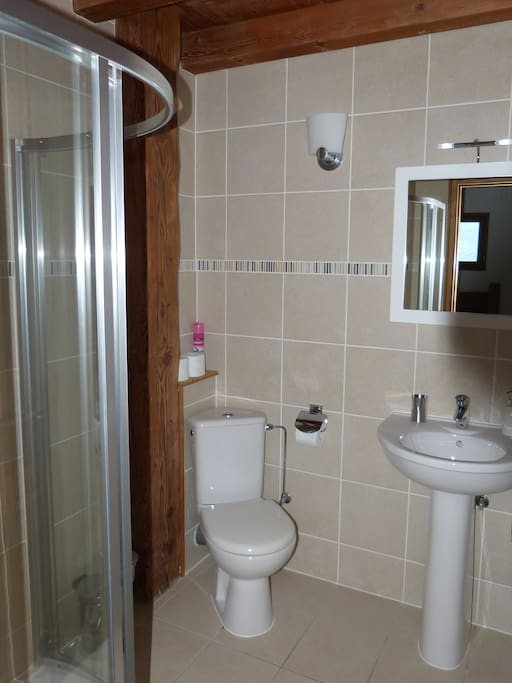 Private en-suite shower room