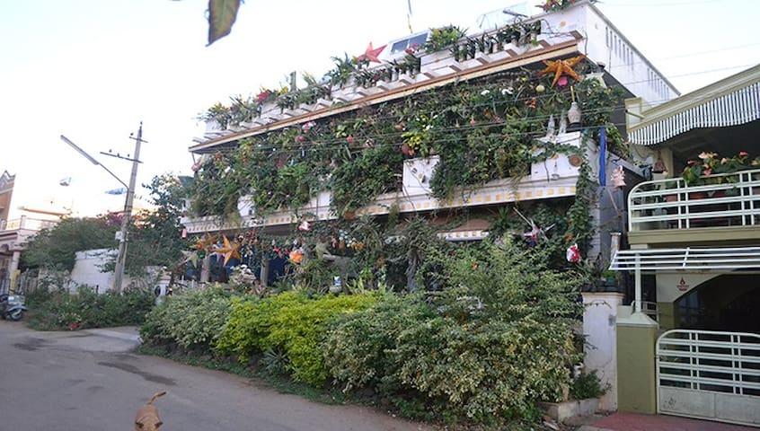 vertical garden, jericho - Mysuru - Haus