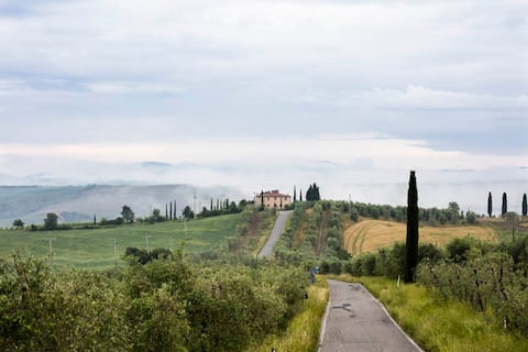Green for family - The color of Tuscany's field