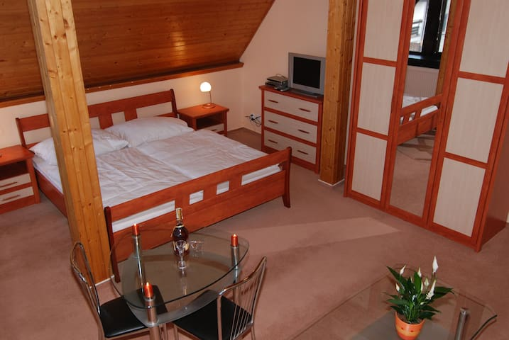 Lovely Attic, spacious and clean, 12min->CENTRE #5 - Prague - Villa