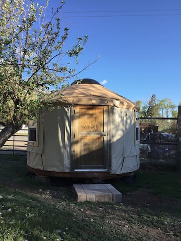 Warm & Cozy Budget Downtown Crestone Yurt!