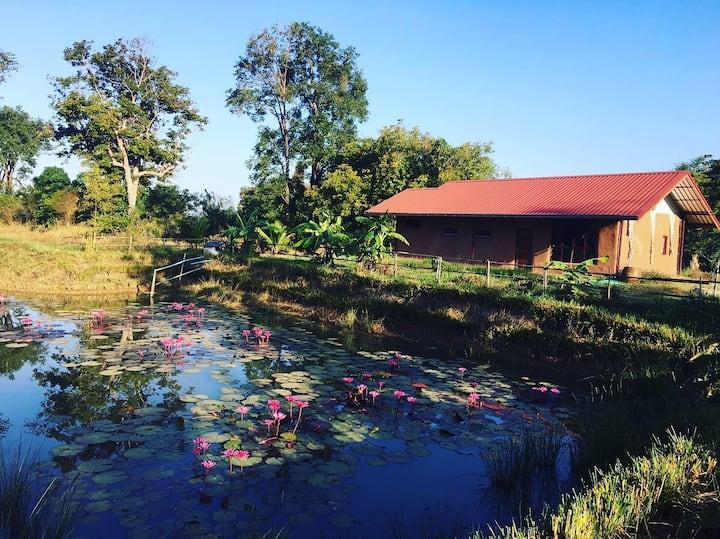 Tiger's Nest Farmhouse