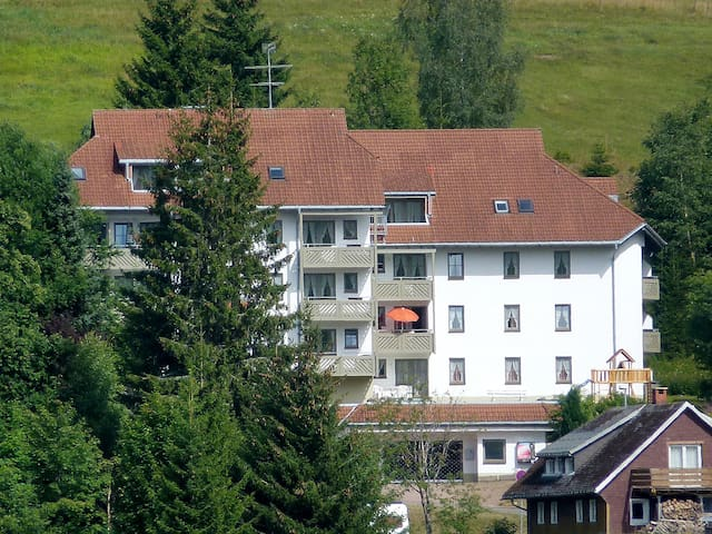 40 m² 2-room apartment Schauinsland in Todtnau - Todtnau - Daire