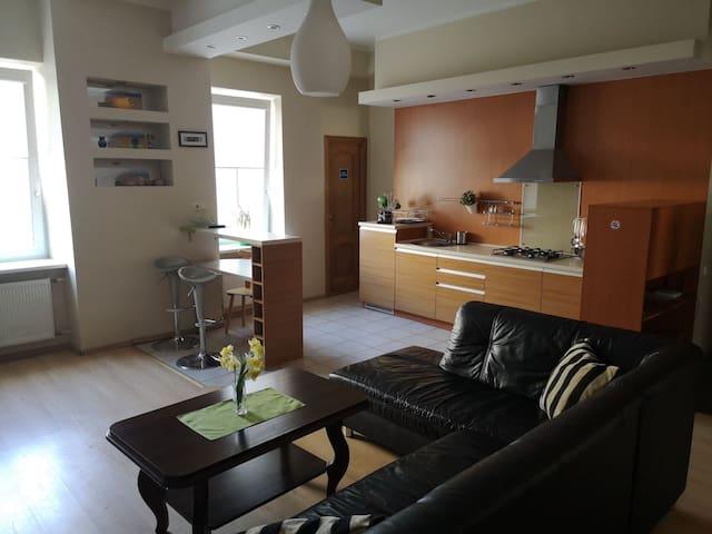 Apartments in Kaunas city center