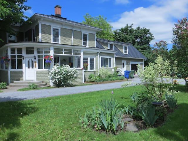 La grande maison verte aux lilas