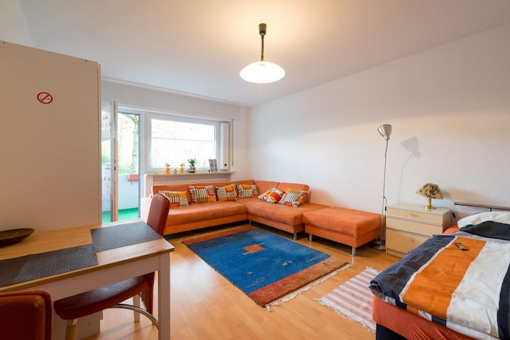 Frankfurt Exhibition/Concert Apartment - Neu-Isenburg - Appartement