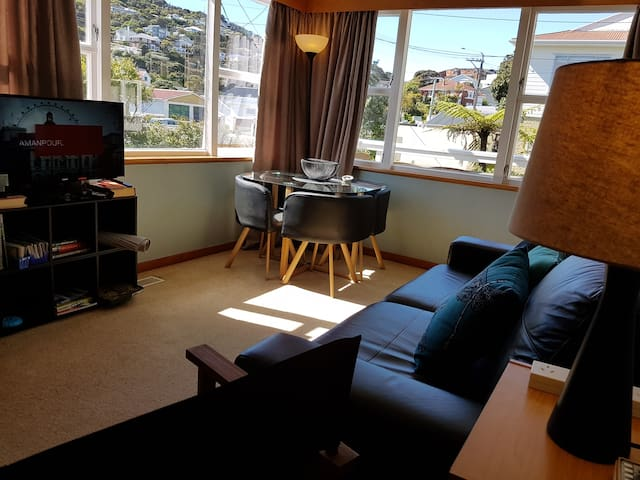Sunny 1 Bedroom Apartment 5 Minutes To City Centre Apartments For Rent In Wellington