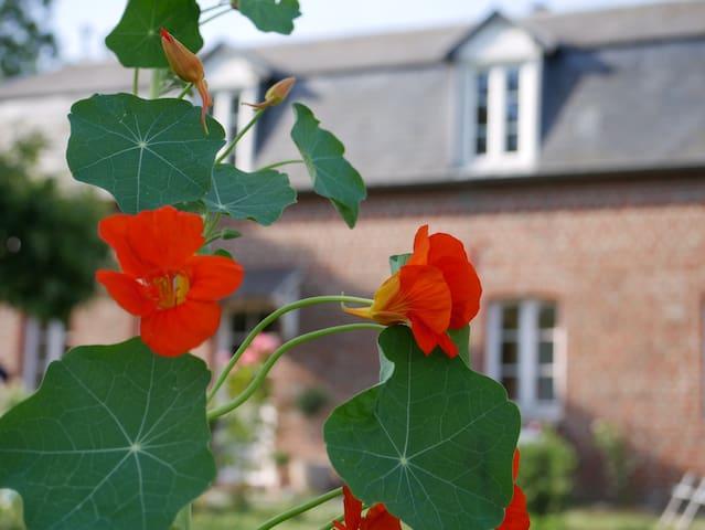 Gîte et permaculture à 15 min de Deauville
