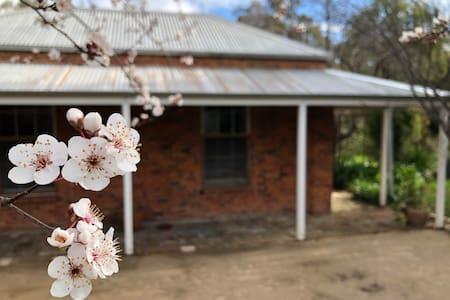 The House at Fallow Heathcote