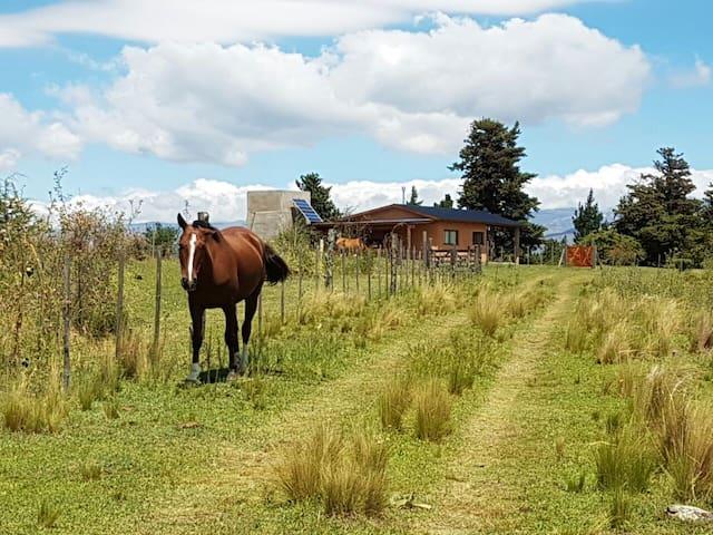 Cabaña - V. Gral Belgrano - Berna - Cordoba - Calamuchita