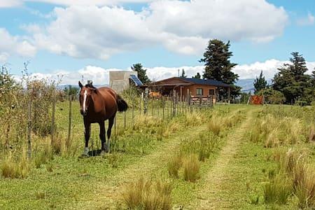 Cabaña - V. Gral Belgrano - Berna - Cordoba - Calamuchita - Dom