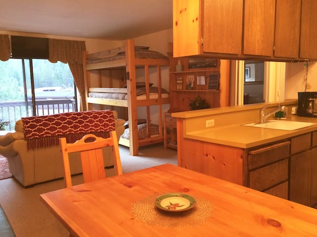 Well Equipped Squaw Valley Condo!