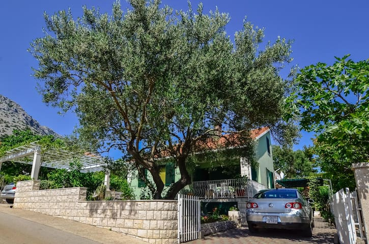 Apartment Olive Tree - Orebić - Lägenhet