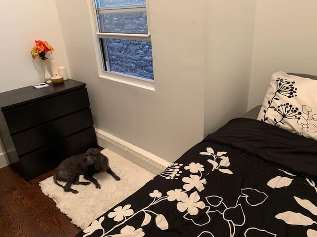 Small & comfy Bedroom near Brooklyn college.