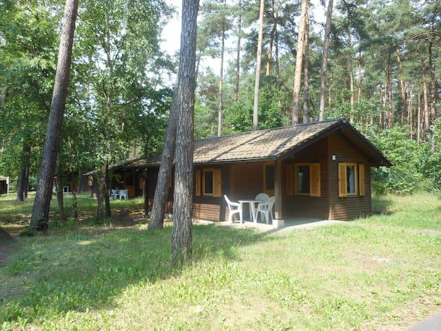 Ferienhäuschen Colbitz - Colbitz - Blockhütte