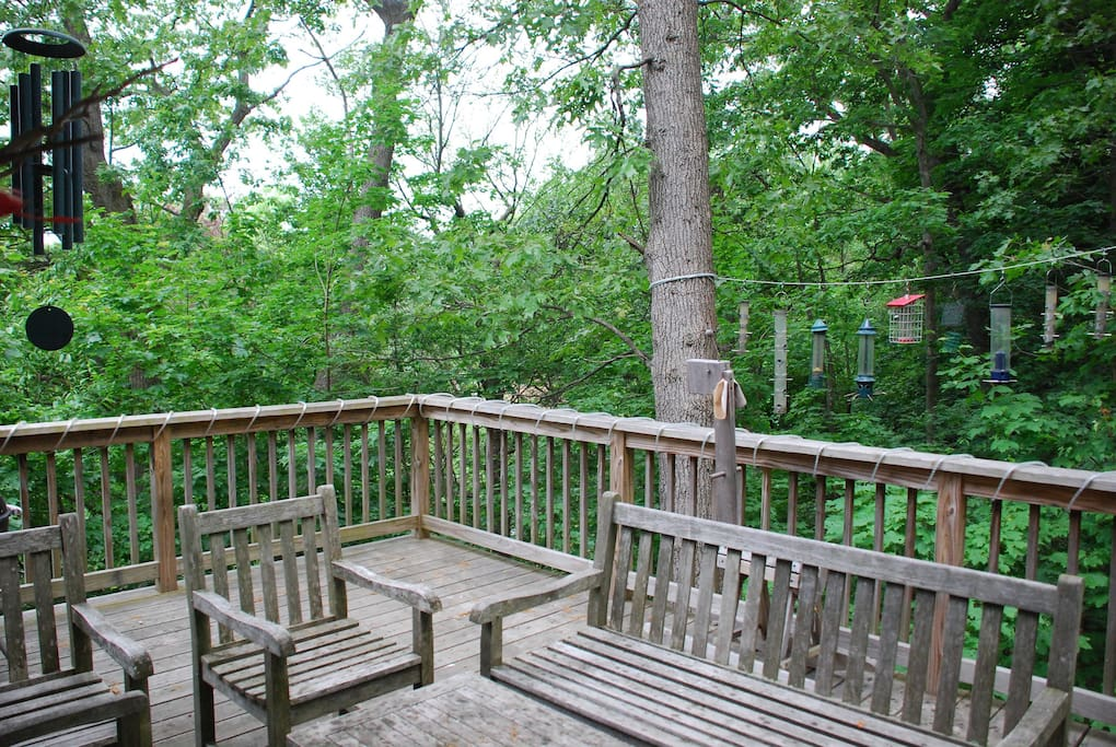 View of woods from deck